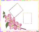 ****cadres flowers****