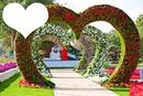 jardim de corações com flores