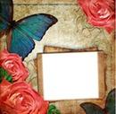 Mariposa y flores
