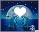 coeur dauphin