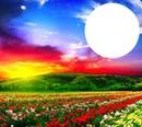 você ao por do sol com as flores