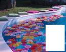 piscina com flores