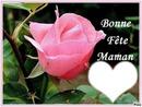 Bonne fétes Maman chérie
