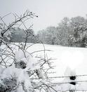 Hiver la neige