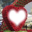 corazon-rosas