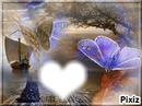 papillon de reve