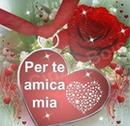 rosa per amica