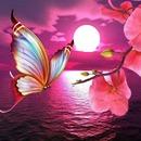 lune et papillon