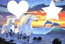 dauphins et chevaux