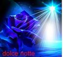 Anniv (rose bleu)