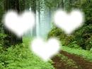 3 coeurs en forêt