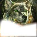 tony Lobo