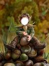 petit elfe du bois