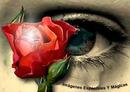 ojo rosa