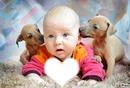 des petit chien avec un bebe