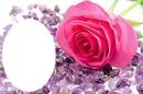 diamantes y una rosa