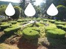 relogio floral de poços de caldas 2