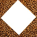 cadre 1 photo leopard