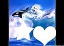 dauphins et chevaux2