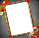 1 photo fleurs