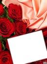 cadre avec rose