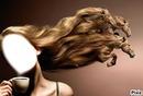 cheveux en chevaux