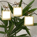 cadre bambou 3 photos
