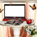 un pc avec un chat et des papillons 1 photo