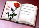 livre I love you