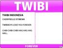Id Card Twibi