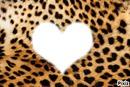 leopard en coeur