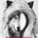 mi loup