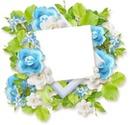 cadre fleur bleue