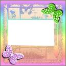 cadres avec papillons vert et rose 1 photo