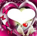 2 colombes avec 4 papillons et un coeur 1photo