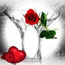 Je T'aime*