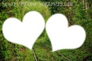 love forest