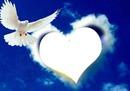 colombe avec un coeur nuage 1 photo
