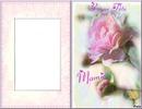 beaucoup d'amour et de tendresse*pour nos MAMIE le 4 mars*fétes des gd méres*