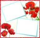 2photos coquelicot