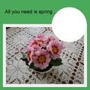 All you need is spring