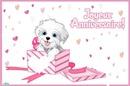 anniversaire chien