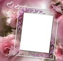 cadre photo fleurs