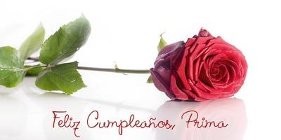 Feliz Cumpleaños Prima