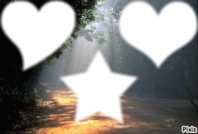 forêt : 2 coeurs différents, 1 étoile