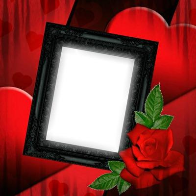 photo montage cadre rose rouge pixiz. Black Bedroom Furniture Sets. Home Design Ideas