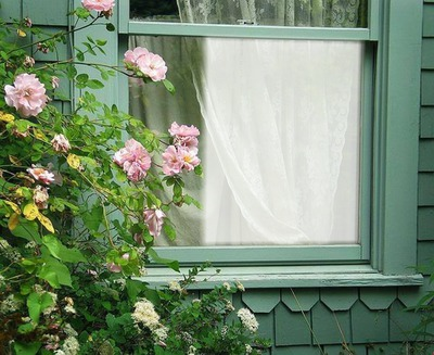 photo montage cadre fen tre avec roses pixiz. Black Bedroom Furniture Sets. Home Design Ideas