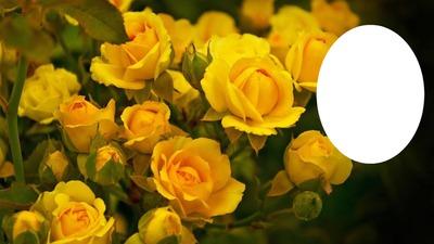 Желтый цветок  № 671071 загрузить