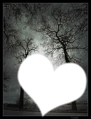 coeur noir et blanc