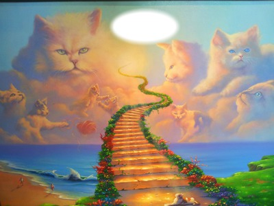 Natural Born Killers The Problem With Cats together with The Uks Top 10 Most Popular Cat Breeds also Maneki Neko Lucky Cat Of Japan besides 9 Facts Life Mexico United States Border in addition Bilmeceler hivfz. on pets on animal crossing